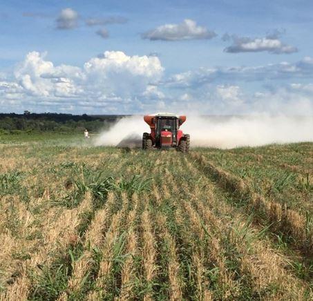 Calcário impulsiona produtividade em áreas de integração lavoura-pecuária